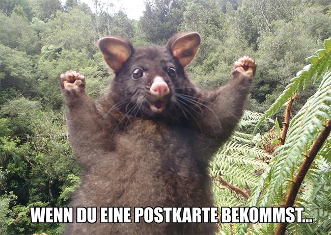 4046-Maus-Meme-1